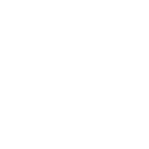 Strategic Management Society Member